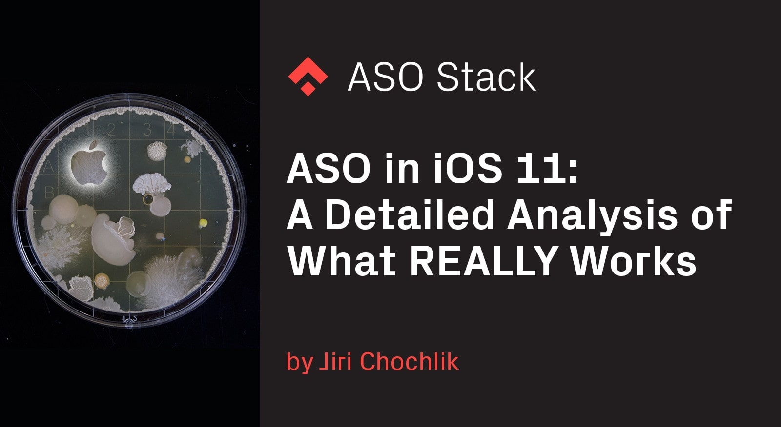 ASO in iOS 11- A Detailed Analysis of What REALLY Works