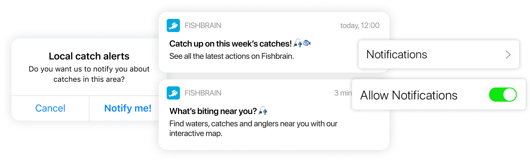 fishbrain case study