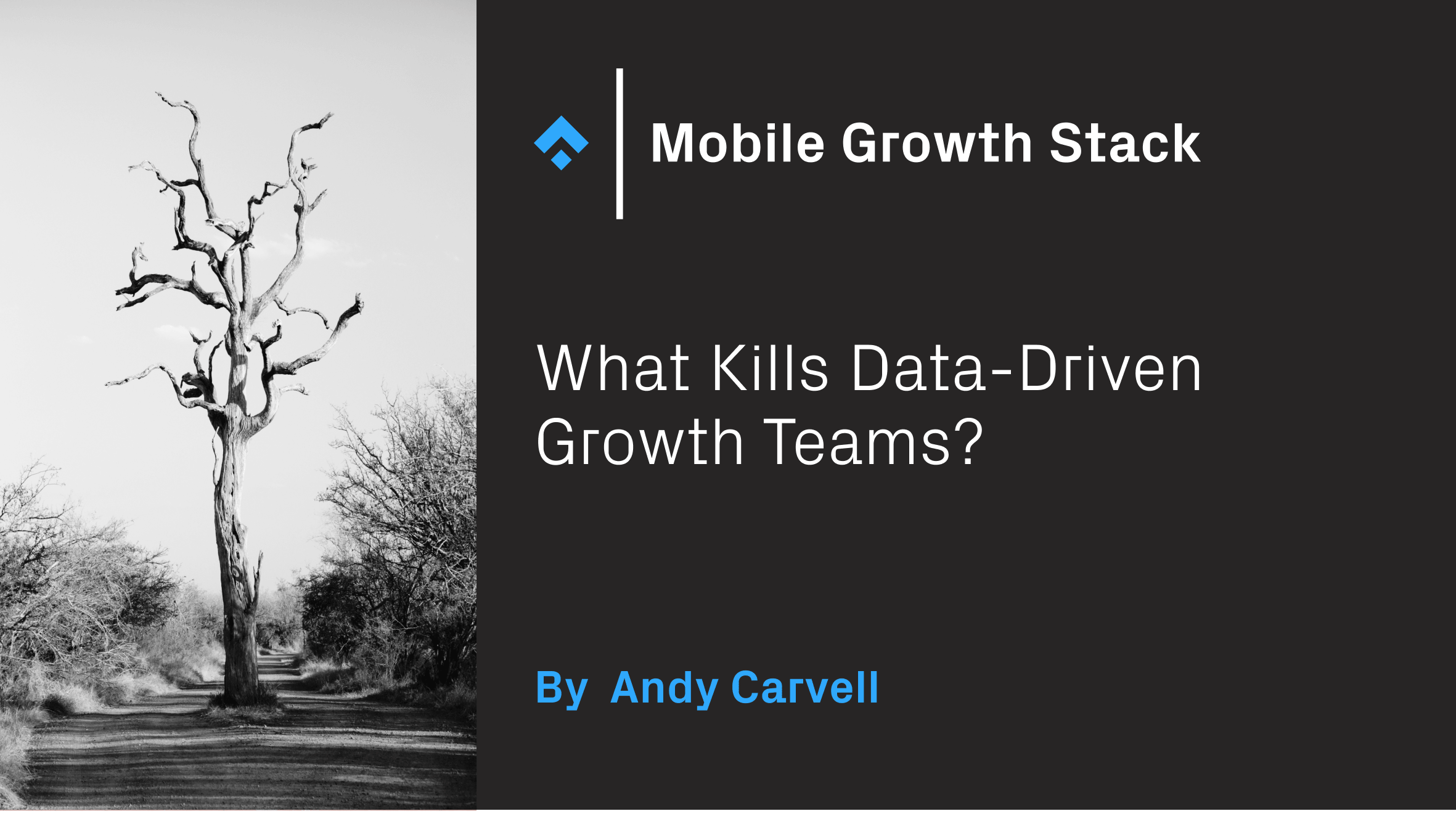 What Kills Data-Driven Growth Teams? by Andy Carvell